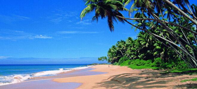 Лучшие месяцы для отдыха на Гоа